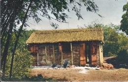 971 - LA GUADELOUPE - SAINT LOUIS - Guadeloupe