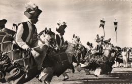 """GROUPE DES RAMPÉOU À SAINT TROPEZ """" LEI CHIVAU-FRUS """"  TAMBOURINAIRES COMME À LA PROCESSION DE LA FÊTE DIEU À AIX - Danze"""