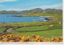 (IR1) BALLYDONEGAN BAY, BEARA PENINSULA, WEST CORK ... JOHN HINDE - Cork