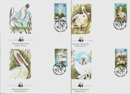 ROMANIA 1984 - WWF Dalmatian PELICAN / Krauskopfpelikan - Set 4FDC Mi 4104-07 Wwf1891 - 1948-.... Republics