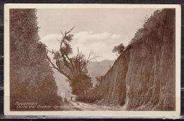 Fotokarte, Tucuman, Corte Del Diablo - Camino Al Parque Aconquija (40287) - Argentinien