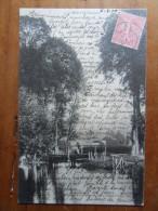 NORDAUSQUES    La Hem  1904 - Altri Comuni