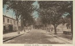 Arles (13)  Raphèle : Avenue D´Arles - Arles