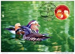 Maxi Card NT$5 Taiwan 2013 Congratulations Stamp Chinese Wedding Mandarin Duck Circular Unusual