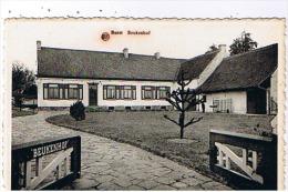 Burst - Beukenhof - Erpe-Mere