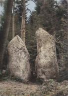 Fournols D'Auvergne 63 - Rochers Pierres Folles - Cachets Postal Et Colonie De Vacances - Non Classificati
