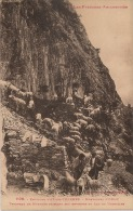 13 / 7 : 157  -  ENV. D 'AX  LES  THERMES  - Montagne  D'Orlu   - - Ax Les Thermes