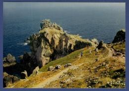 29 CLEDEN-CAP-SIZUN Pointe Du Van - Animée - Cléden-Cap-Sizun