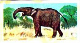 Brooke Bond Tea Trade Card Prehistoric Animals No 45 Deinotherium - Tea & Coffee Manufacturers