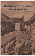 Bulletin Paroissial De Lapoutroie  Février1964 Programme Du Cinéma Jeanne D´arc - Religion