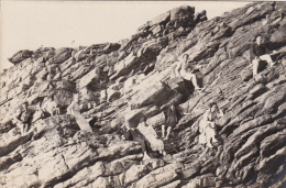 ERQUY - Juillet 1919 (22) - Erquy