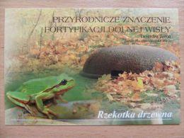 Frog  / Fortress Torun /  Polish  Postcard - Animaux & Faune