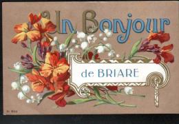 45 - UN BONJOUR DE BRIARE - Briare