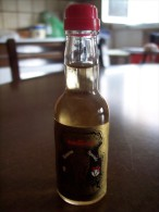 Brandy Del Borgognone: Bottiglia Mignon Tappo Plastica GBG Gambarotta Inga & C. Spa Serravalle Scrivia Alessandria - Alcoolici