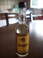 Grappa Di Vinaccia: Bottiglia Mignon Tappo Plastica. Distillerie Gavioli Giuseppe E Figli Snc Bomporto Modena - Alcoolici