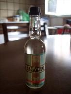 Maraschino Liquore: Bottiglia Mignon Tappo Plastica. Distillerie Gavioli Giuseppe E Figli Snc Bomporto Modena - Spirits