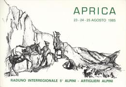 ALPINI ALPINO APRICA-23-24-25 AGOSTO 1985-RADUNO INTERREGIONALE 5°ALPINI-ARTIGLIERI- ORIGINALE D´EPOCA 100% - Militaria