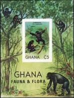 GHANA 1982 ANIMALS  APES MONKEYS SC#788 S/S VF MNH IMPERF//nonDENTELE (DEB09) - Chimpanzees