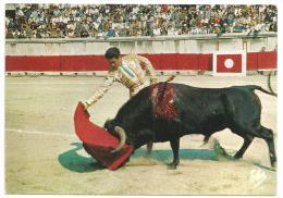 Passe De Muleta -Derechazo---(Réf .5490) - Stierkampf