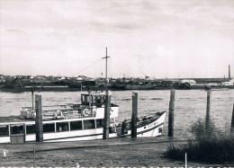 Bazel Schelde  Flandria - Kruibeke