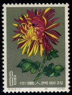 1961 Chrysanthemum,Chrysanthem En,Chrysanthèmes,China,Ch Ine,Cina,Mi.585,MNH - 1949 - ... Repubblica Popolare