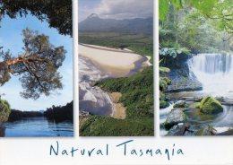 Natural Tasmania - Gordon River, Prion Bay, Horsehoe Falls, Left To Right - Steve Parish Unused - Wilderness