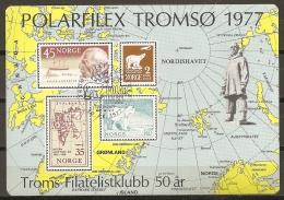 FILATELIA POLAR - NORUEGA 1979 - No Catalogada - Rara! - Expediciones árticas