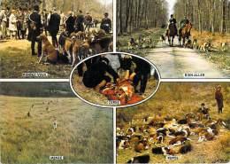Sport-Chasse à Courre  (vénerie) Hunting Hetzjagd - Multi Vues (chiens) (Rendez-vous;Bien-aller;Menée;Repos;Curée) - Caccia