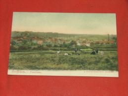 BOUFFIOULX  -  Panorama   -  1906 - Châtelet