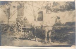 CARRUAJE A CABALLO L'ARGENTINE CIRCA 1910 DOS DIVISE UNCIRCULATED CHEVAUX HORSE - Cavalli