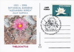 CACTUSSES AT CLUJ NAPOCA BOTANICAL GARDEN, SPECIAL POSTCARD, 2006, ROMANIA - Sukkulenten