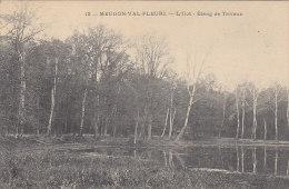 Meudon Val Fleuri 92 - Précurseur -  Ilôt Etang De Trivaux - Meudon