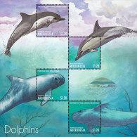 Micronesia-2013-Marine Life-DOLPHINS OF THE CARIBBEAN SHEETLET - Marine Life