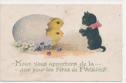 JOYEUSES PAQUES ))  Nous Vous Apportons De La Joie Pour Les Fêtes De Paques,   Chat Et Poussins - Easter