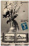 Souvenir De Segré, Multivues, Bouquet De Fleurs - Segre
