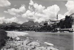 BELLUNO - COL FIUME PIAVE - F/G  - V: 1953 - Belluno