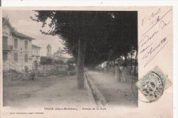 VENCE (ALPES MARITIMES)  AVENUE DE LA GARE  1906 - Vence