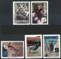 GUATEMALA 1979 WILD ANIMALS & BIRDS SC#C675-79 MNH OWL CONDOR, CAT (DEL06) - Stamps