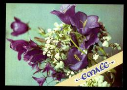 Mother Day In Estonian On Estonia USSR Mint Stamped Postcard From 1991  Carte Postale  URSS Entier - 1923-1991 USSR
