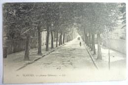44 NANTES - AVENUE DELAUNAY - Précurseur - Nantes