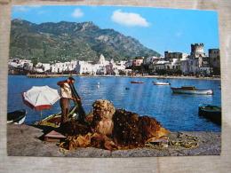 Italia  Forio D'Ischia    Pescatore - Pecheur  - D106528 - Napoli (Naples)