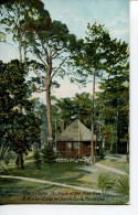 """CHACO CHULEE """" THE HOUSE OF THE PINE TREE  -  A WINTER CAMP ON SANTA LUCIA PLANTATION - Portland"""