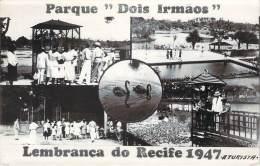 """Recife - Parque """"Dois Irmaos"""" Lembrança Do Recife 1947 - Recife"""
