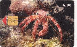 Venezuela, CAN2-0030-2, Marine Fauna, Ermitaño/cangrejo Ladrón, 2 Scans. - Venezuela