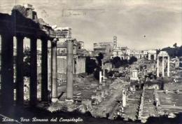 Roma - Foro Romano Dal Campidoglio - 8 - Formato Grande Viaggiata - Roma