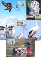 2013 Transnistria, Natural Reserves Of Transnistria, Jagorlyk, Birds, 5 Maxicards, Mint/** - Birds
