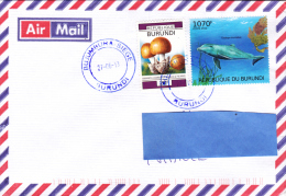 Z] Belle Nice Lettre Burundi Dauphin Dolphin Sea Mammal Mammifère Marin Tursiops Truncatus - Dolphins