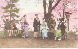 7791 - Japon Femmes Sous Les Cerisiers En Fleurs / Japan Women Under Cherry Blossom - Japon