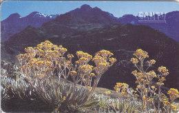 Venezuela, CAN2-0488, Venezuelan Moorlands, Sierra Nevada  (3/3), 2 Scans. - Venezuela