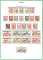 TUNISIE.   .1926 / 28.   .Y&T N° 120 à 146* MLH..  Sur Feuille D'album. - Tunisie (1888-1955)